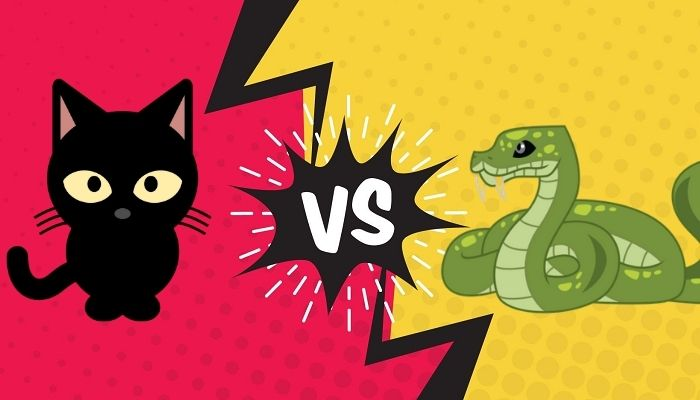 Do cats eat snakes?