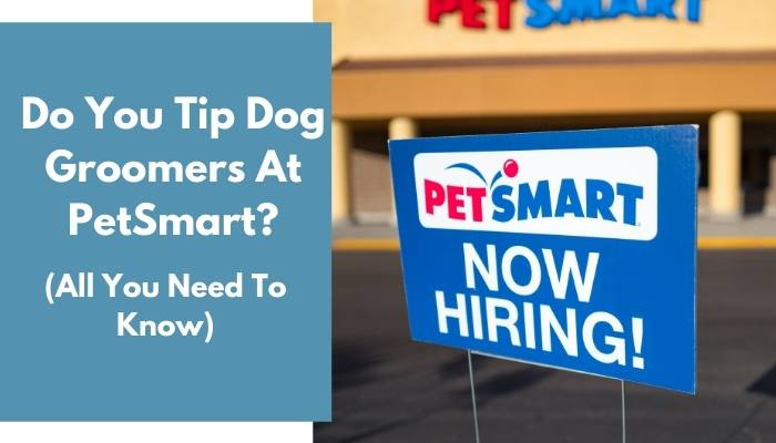 Do You Tip Dog Groomers At PetSmart